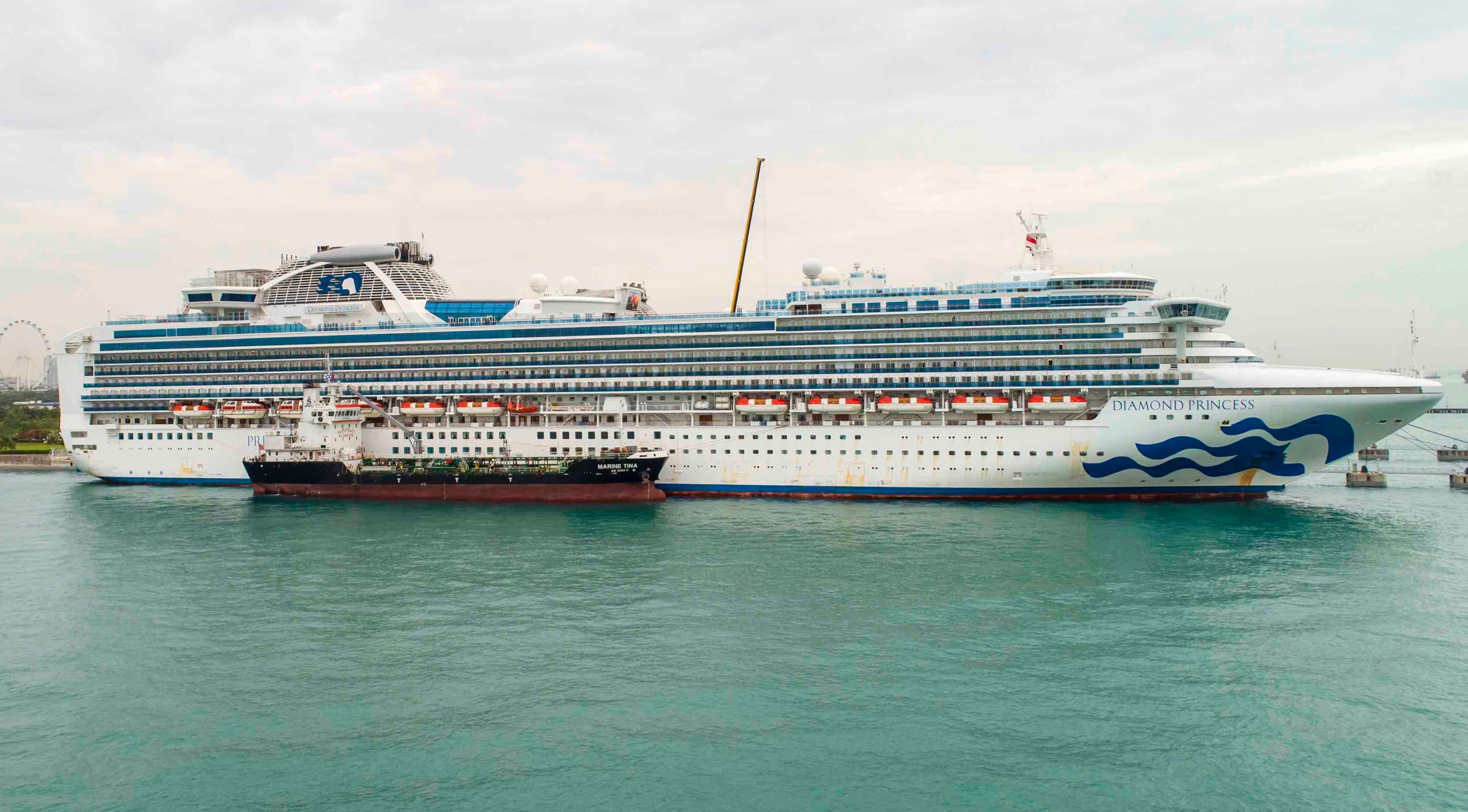 Search for best-in-class provider to disinfect Diamond Princess