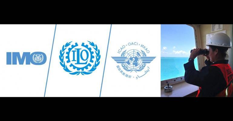 CRUISE IMO ILO ICAO.jpg