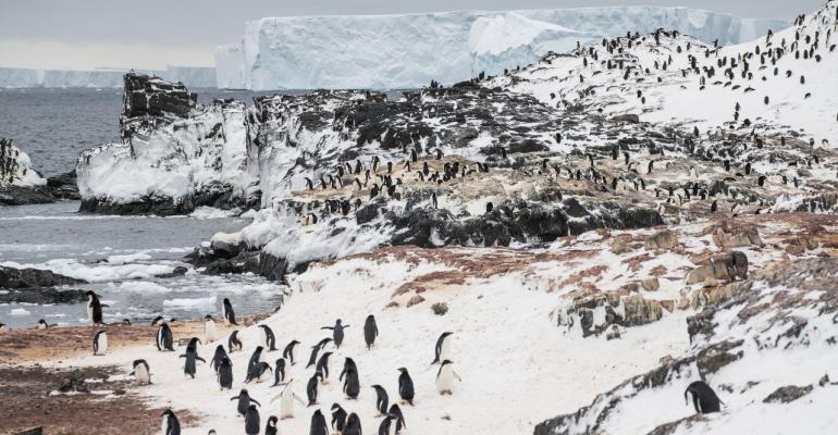 CRUISE_Antarctica_Photo_ Lauren_Farmer_G_Adventures_IAATO.jpg