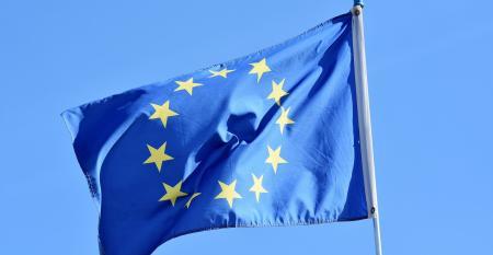 CRUISE EU flag.jpg